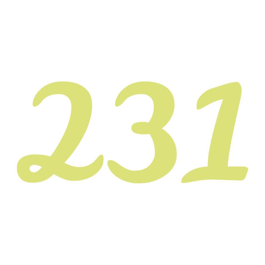 Selbstklebende Hausnummern - 20 cm - dreistellig