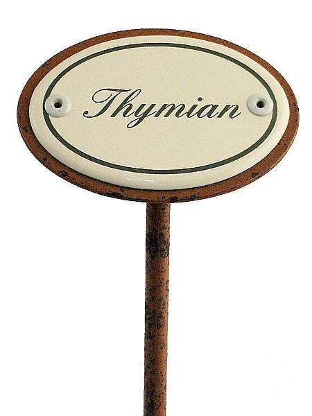 Gartenstecker aus Emaille für das Kräuterbeet - Thymian bei SchilderShop