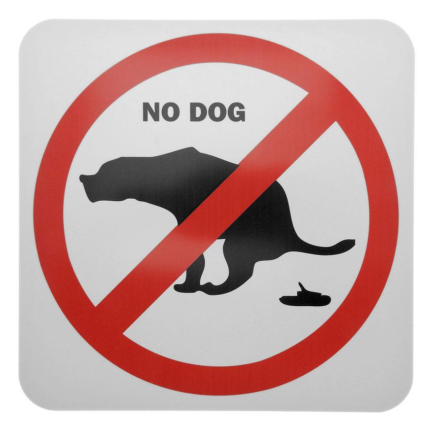 verbotsschild hunde aus pvc hunde verboten no dog hausnummern und schilder online kaufen. Black Bedroom Furniture Sets. Home Design Ideas